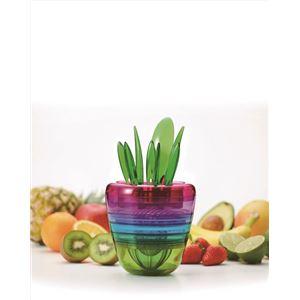 CH-2009 FRUITS PLANT(フルーツプラント)