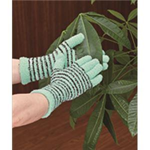 のびのび! お掃除手袋 2色組