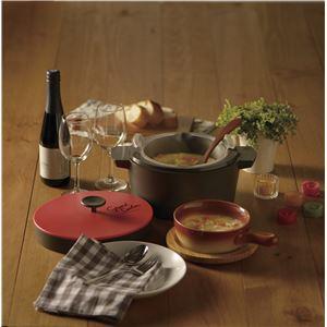 電子レンジ専用保温調理鍋 Grand Cooker (グランクッカー) オレンジ RE-1526