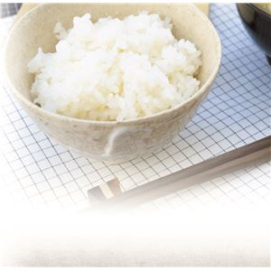 電子レンジ専用 炊飯器 【米研ぎプラス】 日本製 備長炭配合 耐熱仕様 計量カップ 飯ベラ付き 『ちびくろちゃん』