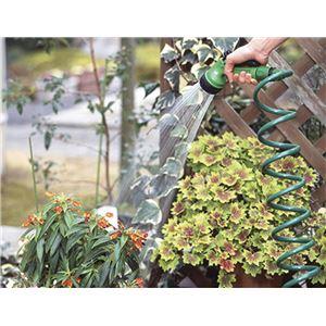 F5973 菜菜畑 ガーデンコイルホース レギ...の紹介画像4