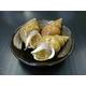 香住港のお惣菜 味付白ばい貝(むき身)4袋入り 写真6