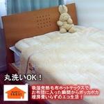 あったか発熱毛布 ホットテックス(HOT TEX)ニューマイヤー毛布