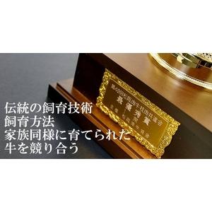 松阪牛A5 厳選 霜降りカルビ 500g 5〜6名様用 - 拡大画像
