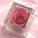 【2010年母の日予約開始】草加煎餅DEお母さんありがとう・一輪のバラの花付 写真4