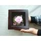 プリザーブドフラワーの壁掛け ピンクのバラ - 縮小画像1