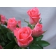 贈り物にローズハートのピンクバラ アレンジ 写真3