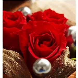 プリザーブドフラワー ローズジュエルボックス赤バラ