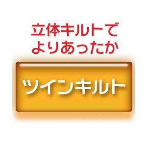 羽毛布団のリフォーム(打ち直し)【お手軽コース】(ダブル掛→ダブル掛/ツインキルト仕立)【19212】ブルー 綿100%