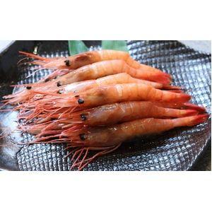 【老舗鮨屋御用達】築地魚河岸から直送 甘エビ (1kg) たっぷり1kgで驚きのこの価格! ご贈答用 - 拡大画像