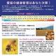 ネコの健康を守る天然のサプリメント『ローヤルゼリー・ニャン』  ×3 お留守番用DVDセット 写真3