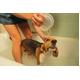 有益微生物洗剤バイオロハスクリーナー 500mlスプレーボトル 写真4