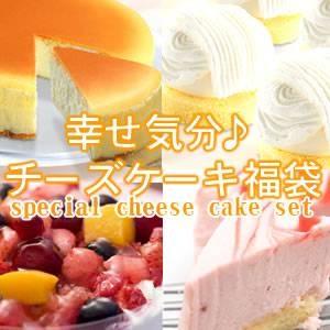 【食べ放題】幸せ気分♪チーズケーキ福袋!! - 拡大画像
