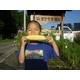 【9月2日で終了 生でも食べられるとうもろこし】朝一番採りを直送!フルーツコーン「ゴールドラッシュ」 5kg 写真2