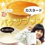 ≪ 3,300 円≫【数量限定!】バケツプリン1リットル(カスタード)