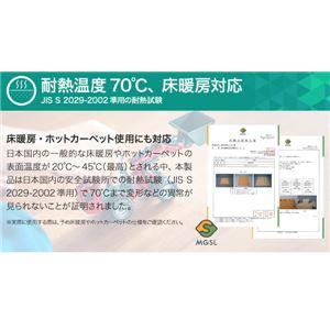 極厚ジョイントマット 2cm 大判 【やさしい...の紹介画像5