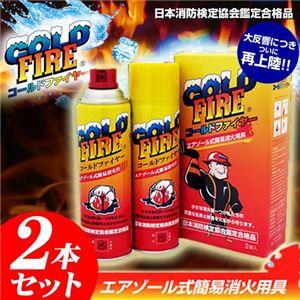 エアゾール式簡易消火器 コールドファイヤー(COLD FIRE) 【2本セット】