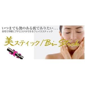 美スティック ローラータイプ 【Bi-Stick】 プラチナシルバー