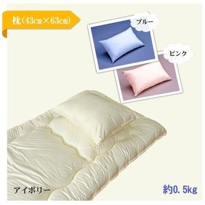 ディーガード枕 ブルー  【ダニ対策・ダニ予防まくら】