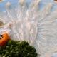 【超お買い得】大分県産 豊後ふぐ刺身  1皿3人前盛り 写真2
