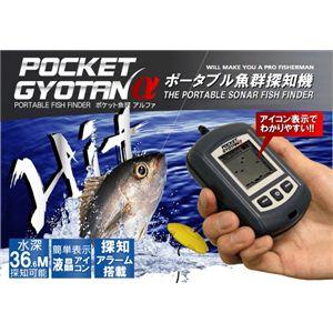 ポケット魚探α(アルファ) - 拡大画像
