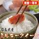 【味と価格に自信アリ!】厳選一等米!平成21年産 福島県産ミルキークイーン白米(30kgの玄米を精米して出荷します。重量が約10%目減りします)  写真1