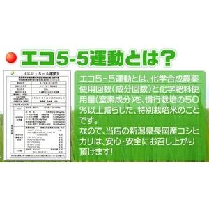 新潟県長岡産コシヒカリ(10kg)