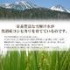 松田さんちの魚沼産コシヒカリ20kg(5kg×4袋) 写真5