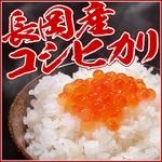 平成22年新米!新潟県長岡産コシヒカリ20kg(10kg×1袋+5kg×2袋)
