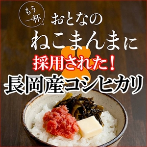 平成21年産 中村さんちの新潟県長岡産コシヒカリ白米 5kg