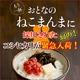 平成21年産 中村さんちの新潟県長岡産コシヒカリ玄米 5kg 写真2
