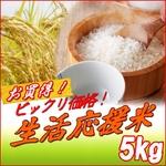 平成22年新米!新潟県長岡産コシヒカリ30kg(5kg×6袋)