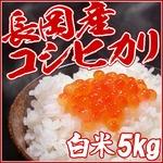 【お試しに!】平成26年産新米! 中村農園の新潟県長岡産コシヒカリ白米5kg