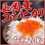 平成26年産新米! 中村農園の新潟県長岡産コシヒカリ白米20kg(5kg×4袋)