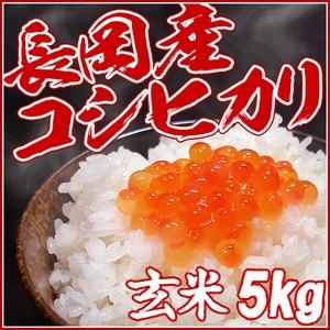 【お試しに!】平成27年 中村農園の新潟県長岡産コシヒカリ玄米5kg