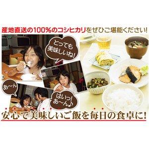 平成27年産 中村農園の新潟県長岡産コシヒカリ玄米20kg(5kg×4袋)