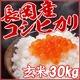 平成26年産!中村農園の新潟県長岡産コシヒカリ玄米30kg(5kg×6袋)