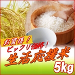 ビックリ価格!生活応援米【A】 白米5kg