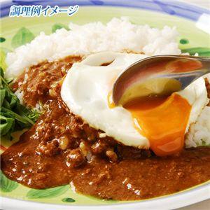 鶏ひき肉のバジル炒め 120g×10袋