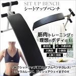 シットアップベンチ(腹筋トレーニング/フィットネス機器) 折りたたみ/コンパクト
