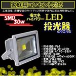 LED投光器 【30W/300W相当】 防水/広角150度 AC100V/5Mコード 防水仕様
