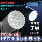 ダクトレール用 LEDスポットライト【高輝度 7W】 省エネ/長寿命