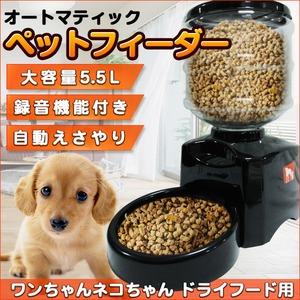 ペットフィーダー 犬 猫 ペット用 大容量 5.5L 音声録音 - 拡大画像