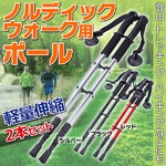 ノルディックウォーク用 ポール 軽量伸縮 2本 杖 シルバー