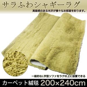 サラふわシャギーラグ200×240cm カーペット 絨毯