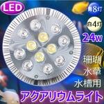 アクアリウムライト/LEDライト 【24W】 口金タイプ 青8白4灯 〔珊瑚 水草 水槽用〕