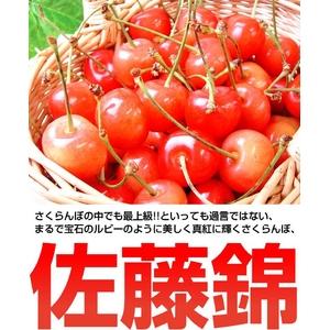 ふぞろいの山形県産さくらんぼ 「佐藤錦」 700g