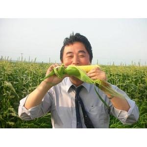 【ご予約 毎年予約殺到!】生でも食べられる!千葉県産とうもろこし味来5kg(11本〜17本)