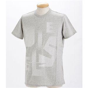 DIESEL(ディーゼル) メンズ Tシャツ 【A】TEMIAE C7WR-00919グレーLの写真1