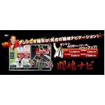 闘魂ナビ 7インチ RM-NV710INK